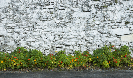 White stone wall with flower border.