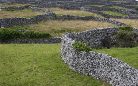 Hand stacked stone walls and green farm fields on the island of Inisheer, County Clare, Ireland