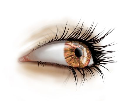 Stylized illustration of a female eye with long luscious eyelashes