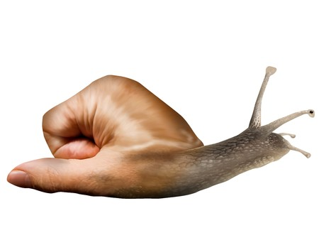 gastropod: Surreal snail with a hand for a shell Stock Photo