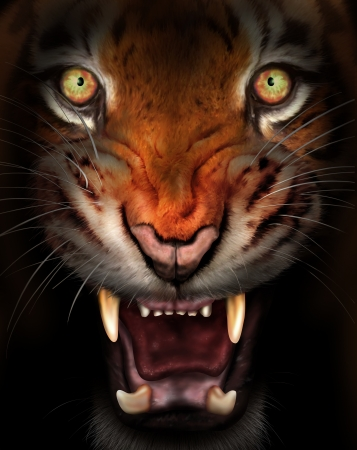 snarling: Wild tiger emerging from the dark shadows