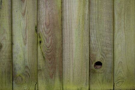 moulded: Knotted wooden fence texture with creeping moss