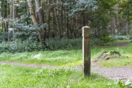 wooden trail sign: Wooden post for keeping you on track in the forest