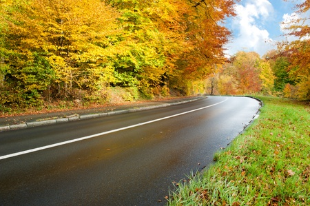 Autumn landscape with road Stock Photo - 8518600