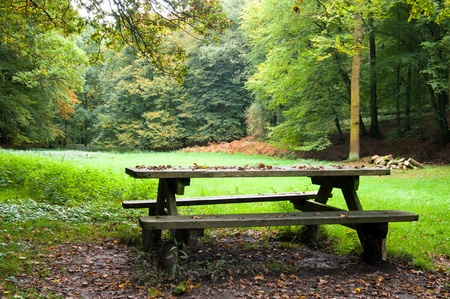 Picnic place in forest Stock Photo