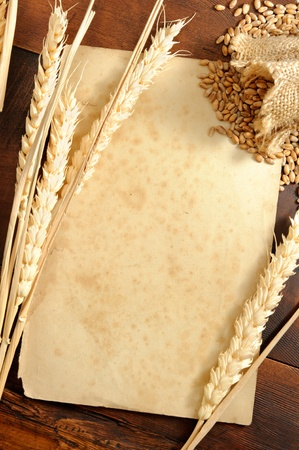 Piece of old paper with wheat ears background. Shallow DOF photo