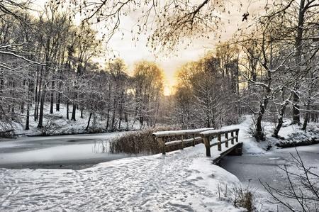 january sunrise: Paisaje de invierno con un puente de madera