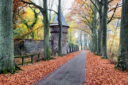 Autumn landscape with road photo