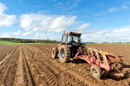 plowing: Tractores arando campo