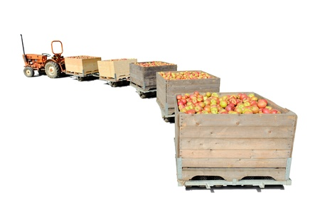Old tractor carrying wooden crates full of fresh apples. Isolated over white photo
