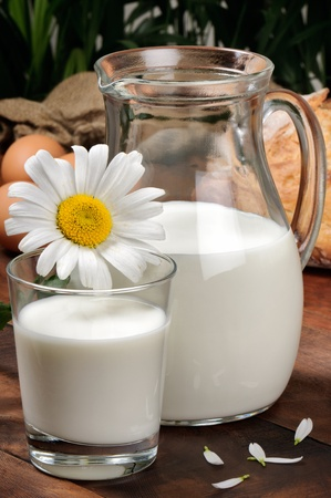 milk jugs: Pitcher of milk with daisy on a wooden table