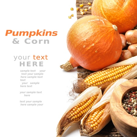 thanksgiving background: Pumpkins and fall vegetables over white background with copyspace Stock Photo