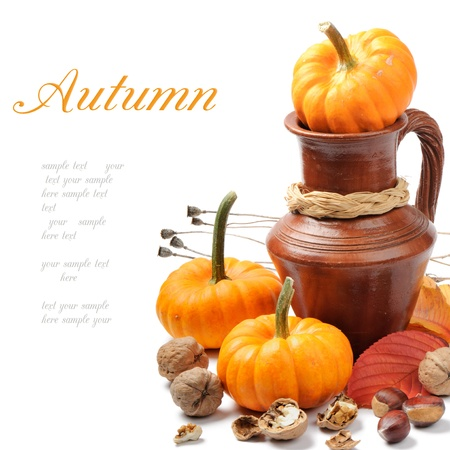 Autumn still-life with pumpkins photo
