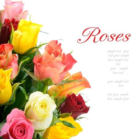 rosas amarillas: Bouquet de rosas multicolores, aislado sobre fondo blanco con copyspace