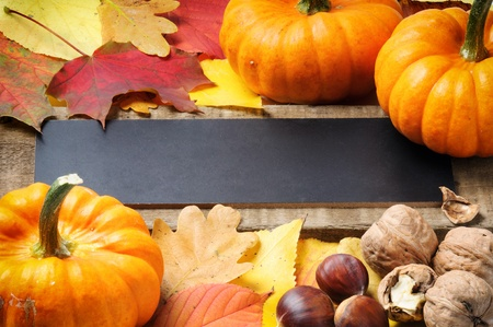 thanksgiving background: Autumn frame with pumpkins, walnuts, chestnuts and leaves Stock Photo