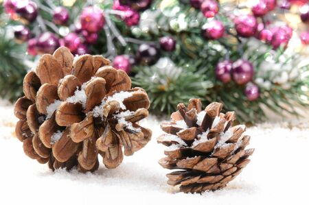 adorn: Pine cones in Christmas setting with snow