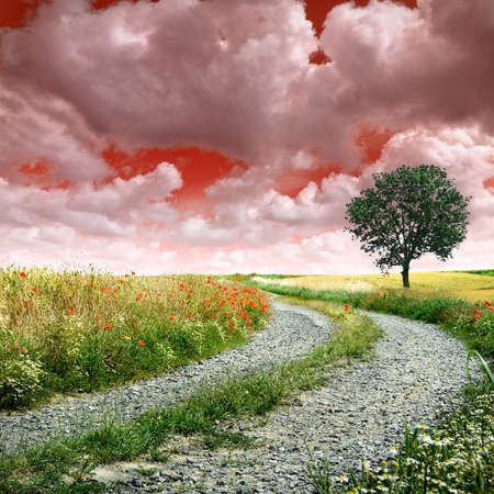 Country road making a curve with red cloudy sky photo