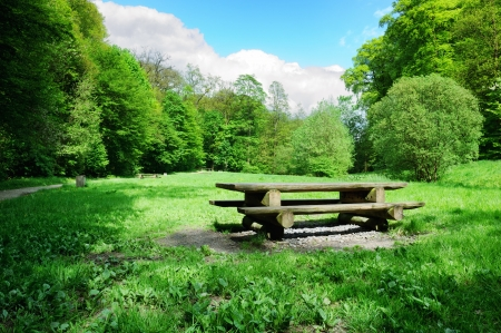 rest in peace: Picnic place in forest opening at sunny day