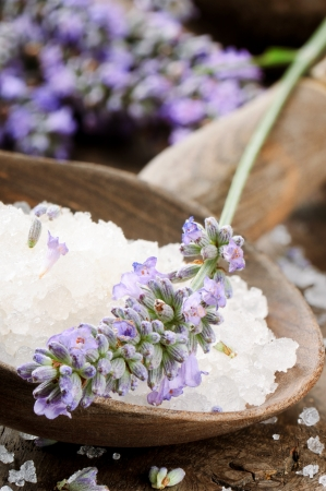 Sea salt and fresh lavender on wooden spoon photo