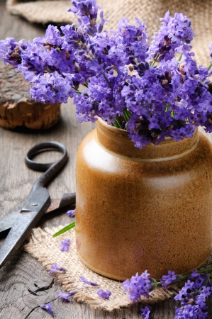 Bunch of freshly cut lavender on wooden table photo