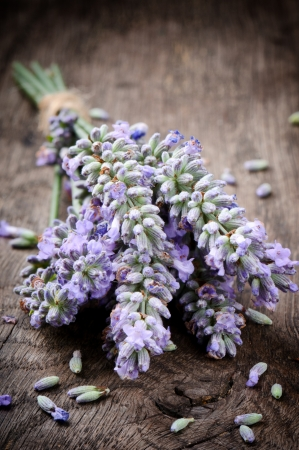 Bunch of fresh lavender on wooden table photo