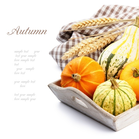 autumn background: Autumn still-life with pumpkins isolated over white
