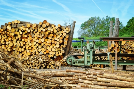lumber mill: Sawmill (lumber mill) at sunny summer day