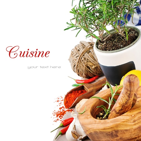 Spices and herbs. Cooking concept photo