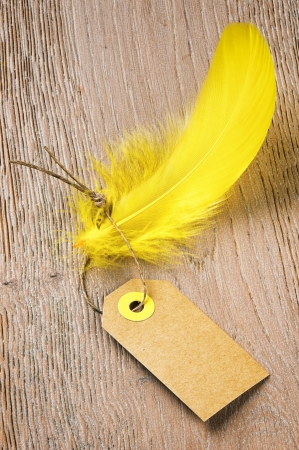 clothing tag: Tag label with feather on wooden background. Low price concept Stock Photo
