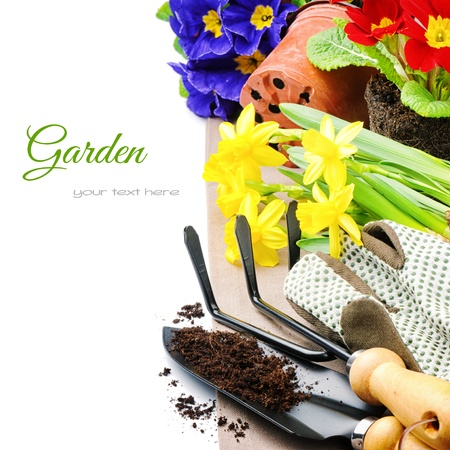gardening gloves: Garden tools and colorful flowers isolated over white