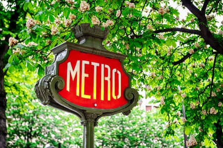 Paris metro sign with blooming chestnut in the background photo
