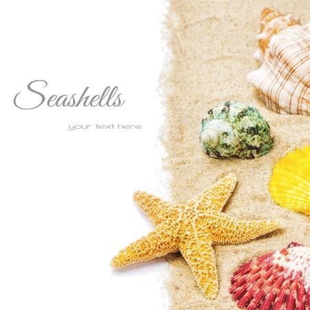 etoile de mer: Coquillages color�s avec du sable isol� sur blanc