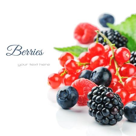 Verse biologische bessen geà ¯ soleerd over white Stockfoto