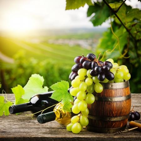 Bottiglie di vino rosso e bianco con uva fresca su sfondo vigneto Archivio Fotografico