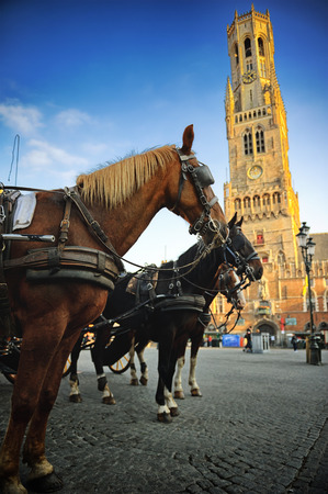 brugge: Horse-drawn carriages at Grote Markt in Bruges, Belgium