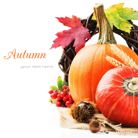 Autumn still-life with pumpkins isolated over white photo