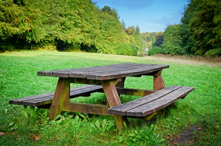 Picnic place in forest at summer day photo