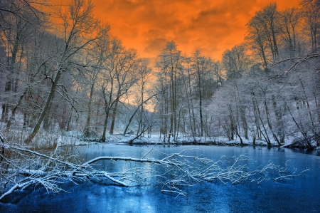 Spectacular orange sunset over white winter forest