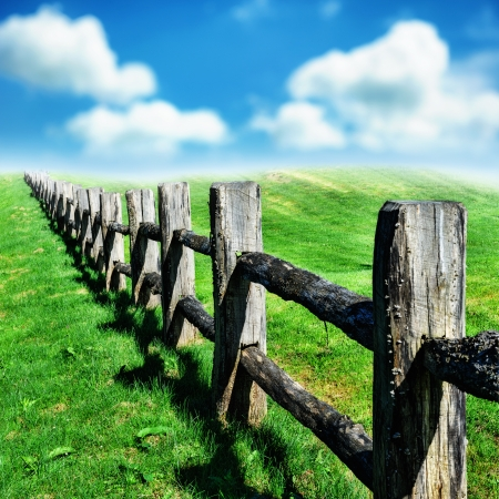 Old wooden fence at green summer field photo