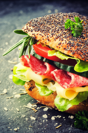 Fresh sandwich with salami and cheese on stone background photo