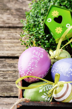 Easter setting with decorative eggs and green plant photo