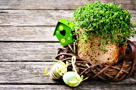 Easter setting with green plant and decorative eggs on wooden  photo