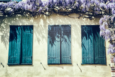 wisteria: Old windows with blue shutters. Traditional French house