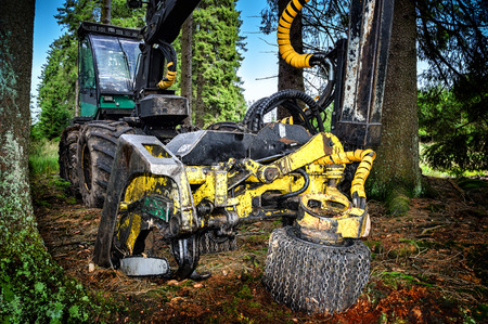 timber harvesting: Working harvester in forest