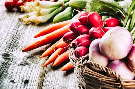 Vers geoogste biologische groenten