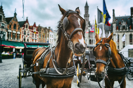 Horse-drawn carriages at the main square of Bruges, Belgium photo