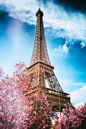 Springtime in Paris. Eiffel tower (toned image) photo