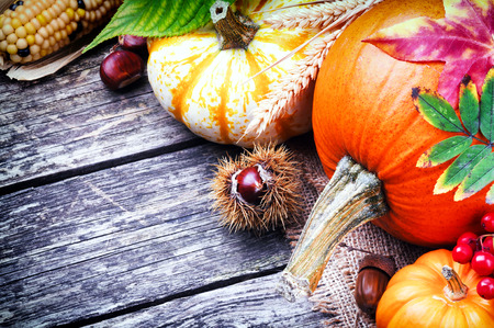 Autumn still-life with pumpkins and corn on wooden background photo