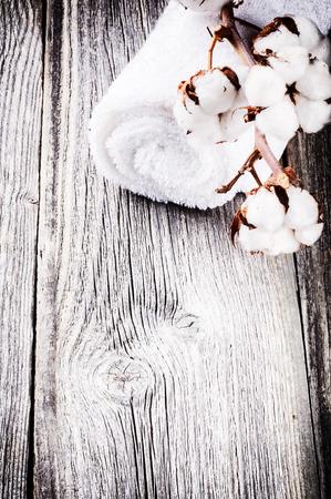 cotton crop: Branch of ripe cotton bolls on bath towel
