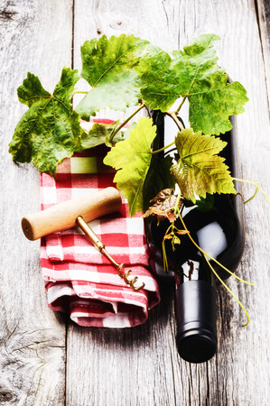 Bottle of red wine with grapevine and corkscrew photo